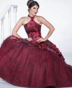 Imagenes de vestidos de xv modernos